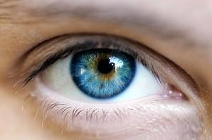 目の色彩.jpg